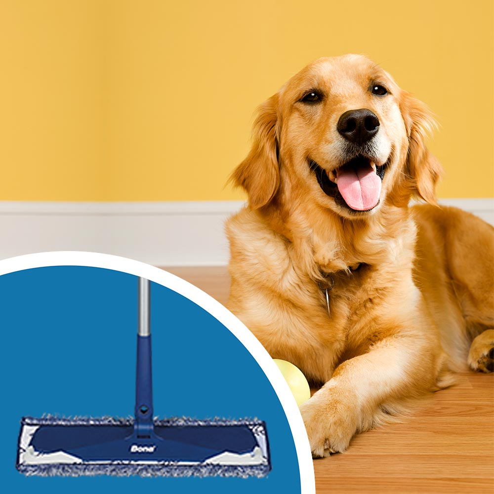 <p><strong>Use an effective floor cleaner to clean the floors with a microfiber mop. </strong>This weekly clean helps to remove any buildup not removed by dry mopping alone. Avoid using a traditional mop and bucket since it&rsquo;s easy to spread excess water on the luxury vinyl flooring. Excess liquids can get into the seams and edges of the floor and destroy the adhesive, making it come loose.</p><br/>